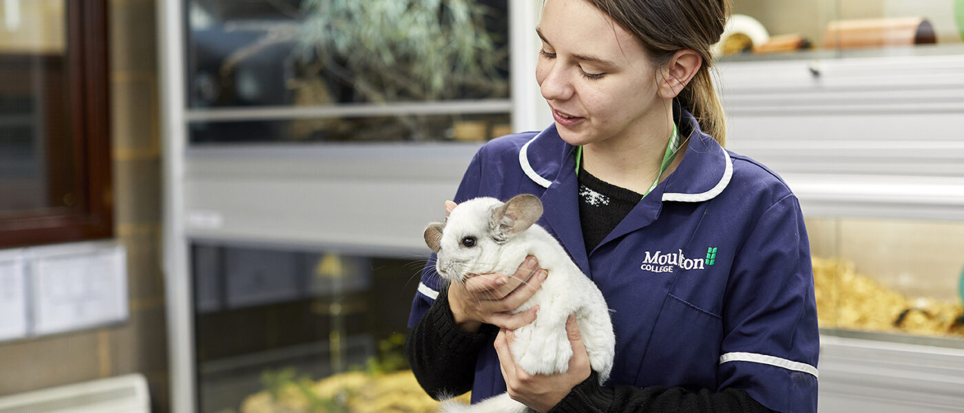 Moulton College Animal Welfare