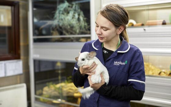 Moulton College Animal Welfare