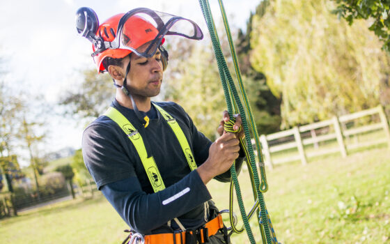 Moulton College Forestry and Arboriculture