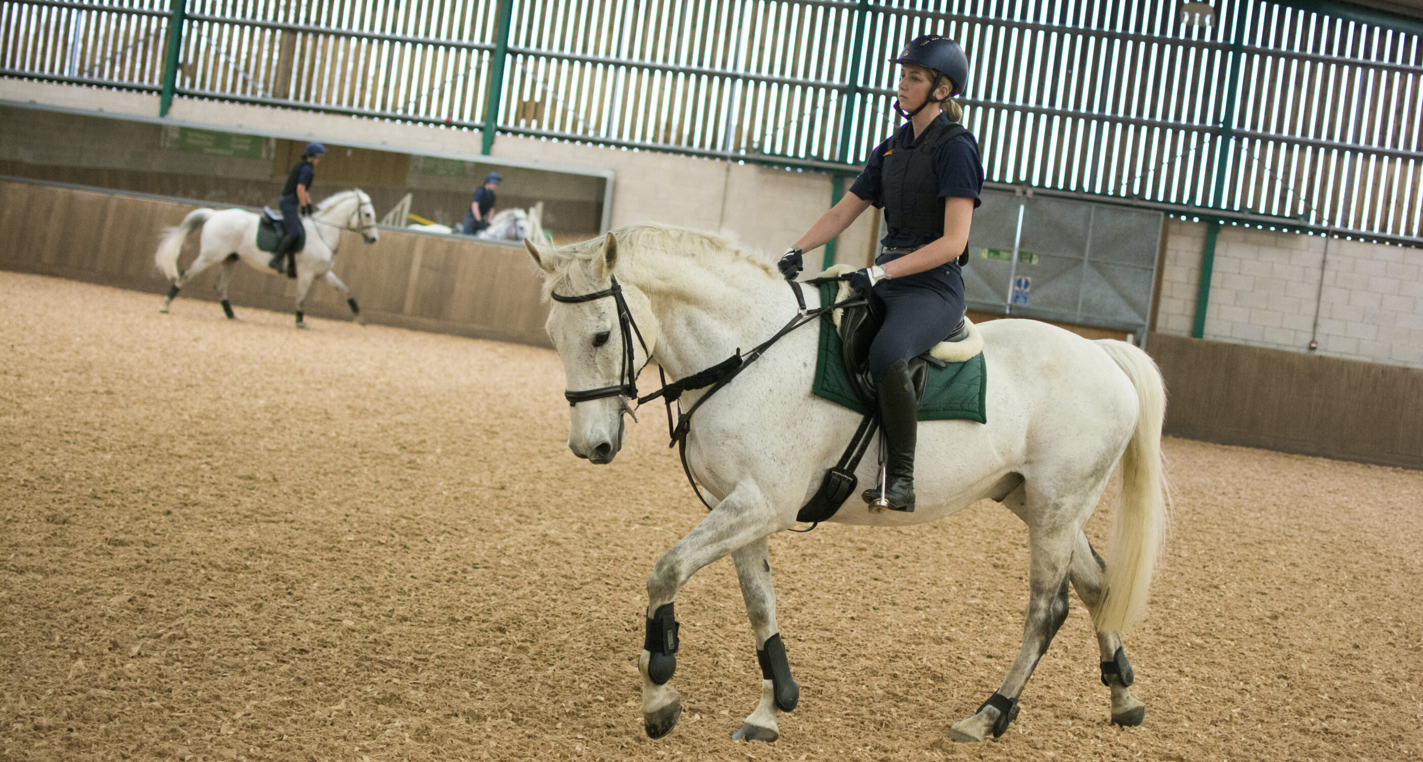 Moulton College Indoor Arena Equine