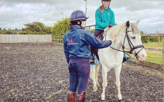 Equine Coaching