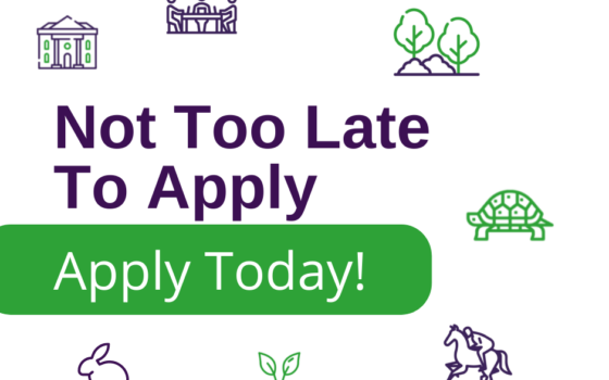 Not too late to apply