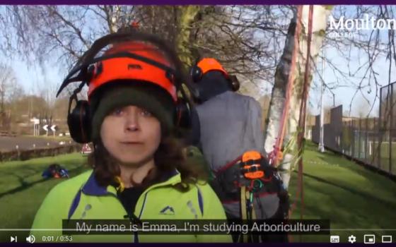 Emma Arboriculture