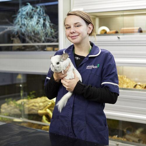 Animal Welfare student profile